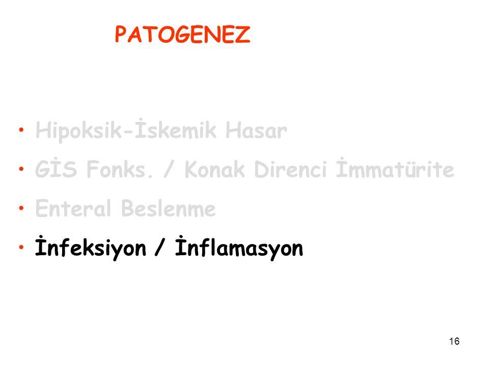 16 PATOGENEZ Hipoksik-İskemik Hasar GİS Fonks. / Konak Direnci İmmatürite Enteral Beslenme İnfeksiyon / İnflamasyon