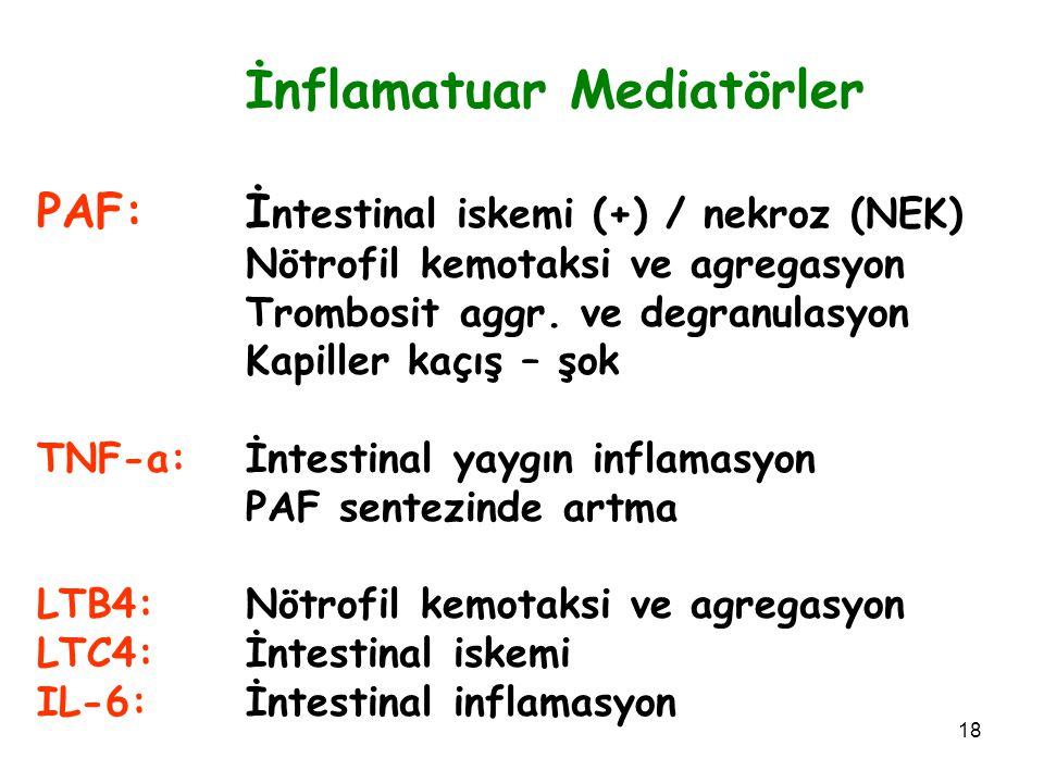 18 İnflamatuar Mediatörler PAF:İ ntestinal iskemi (+) / nekroz (NEK) Nötrofil kemotaksi ve agregasyon Trombosit aggr. ve degranulasyon Kapiller kaçış