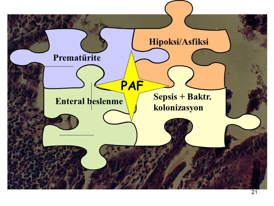 21 Prematürite Hipoksi/Asfiksi Sepsis + Baktr. kolonizasyon Enteral beslenme PAF
