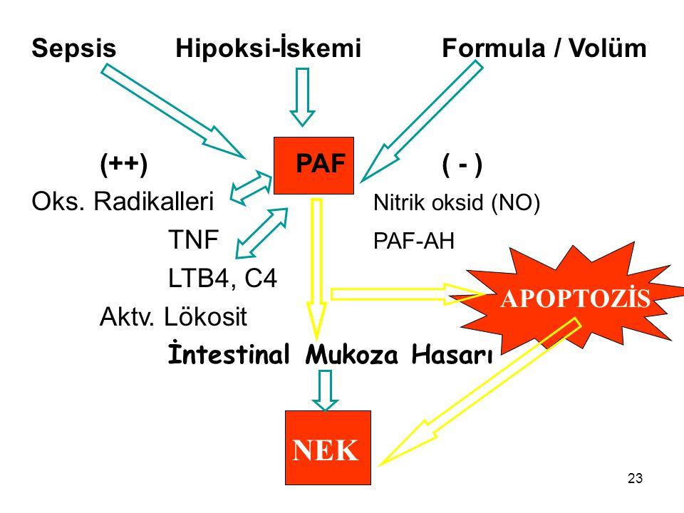 23 Sepsis Hipoksi-İskemi Formula / Volüm (++) PAF( - ) Oks. Radikalleri Nitrik oksid (NO) TNF PAF-AH LTB4, C4 Aktv. Lökosit İntestinalMukoza Hasarı NE
