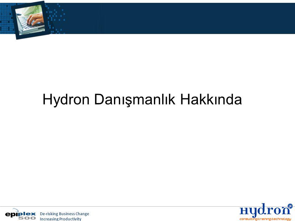 De-risking Business Change Increasing Productivity Hydron Danışmanlık Hakkında