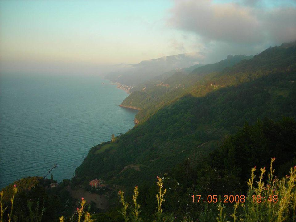 COĞRAFİ YAPISI İlçe Batı Karadeniz Bölgesi'nde sahil kesiminde kurulmuş olup arazı dağlık ve engebelidir. Ormanlık ve dağlık bir bölge olması sebebiyl