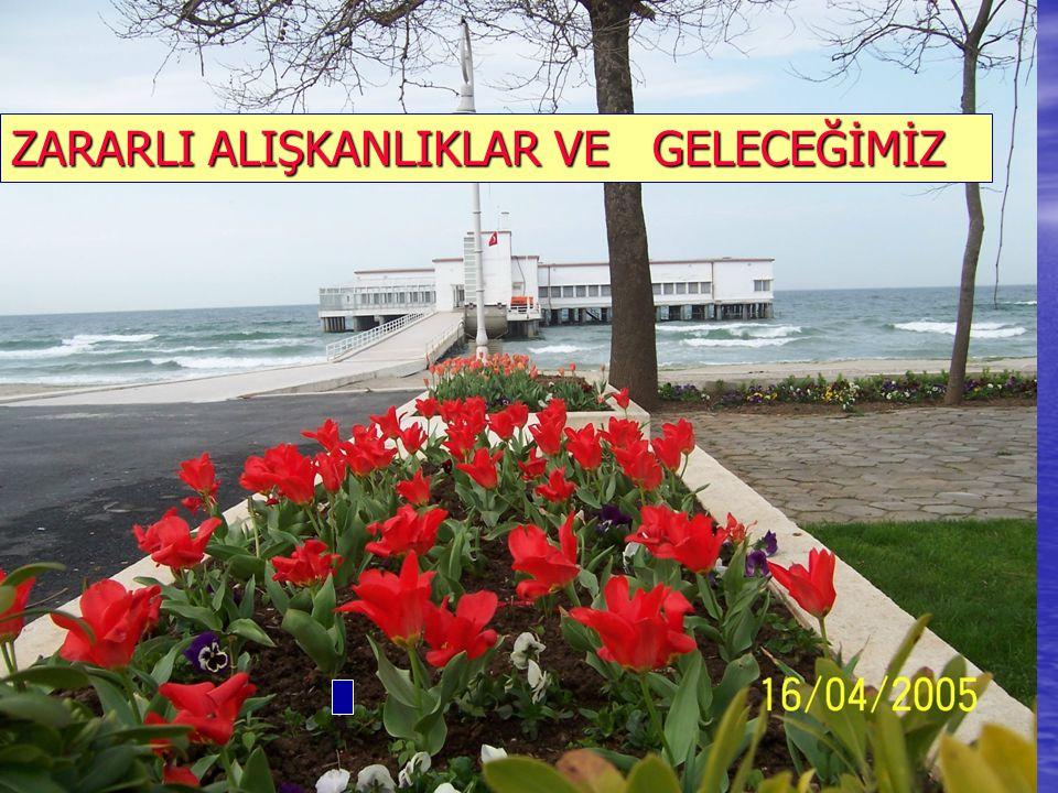 İSTANBUL, 31 MAYIS 20061 ZARARLI ALIŞKANLIKLAR VE GELECEĞİMİZ