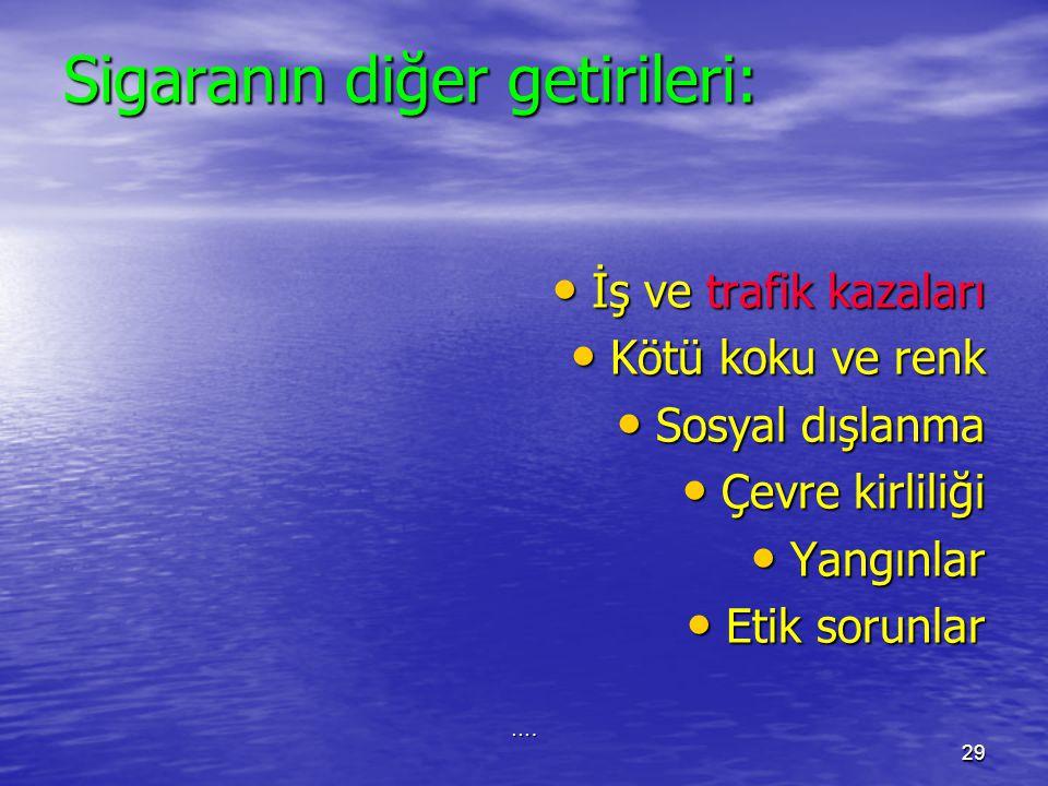 İSTANBUL, 31 MAYIS 200628