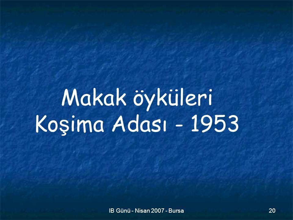 IB Günü - Nisan 2007 - Bursa20 Makak öyküleri Ko ş ima Adası - 1953