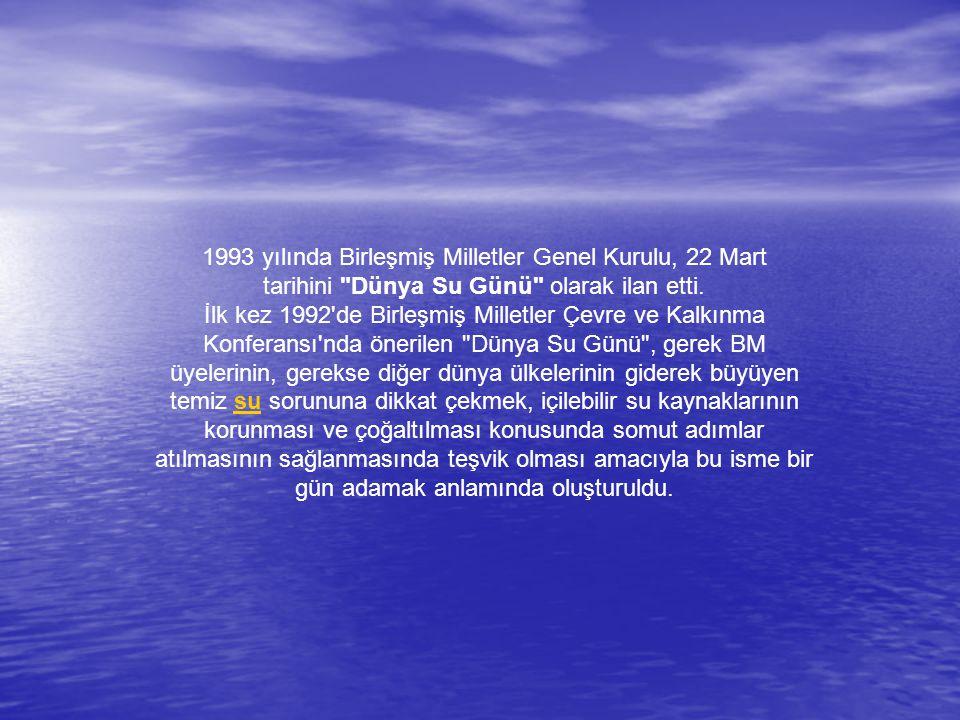 1993 yılında Birleşmiş Milletler Genel Kurulu, 22 Mart tarihini Dünya Su Günü olarak ilan etti.