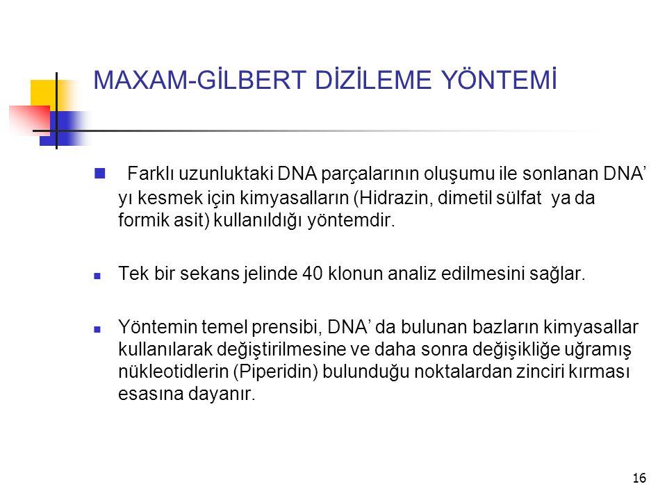 16 MAXAM-GİLBERT DİZİLEME YÖNTEMİ Farklı uzunluktaki DNA parçalarının oluşumu ile sonlanan DNA' yı kesmek için kimyasalların (Hidrazin, dimetil sülfat