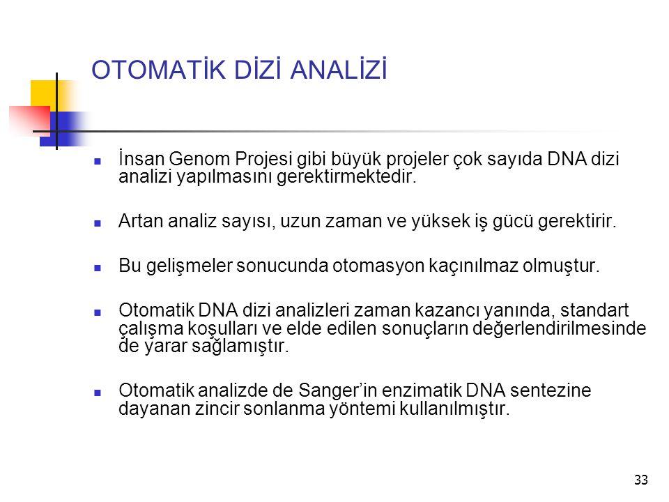 33 OTOMATİK DİZİ ANALİZİ İnsan Genom Projesi gibi büyük projeler çok sayıda DNA dizi analizi yapılmasını gerektirmektedir. Artan analiz sayısı, uzun z