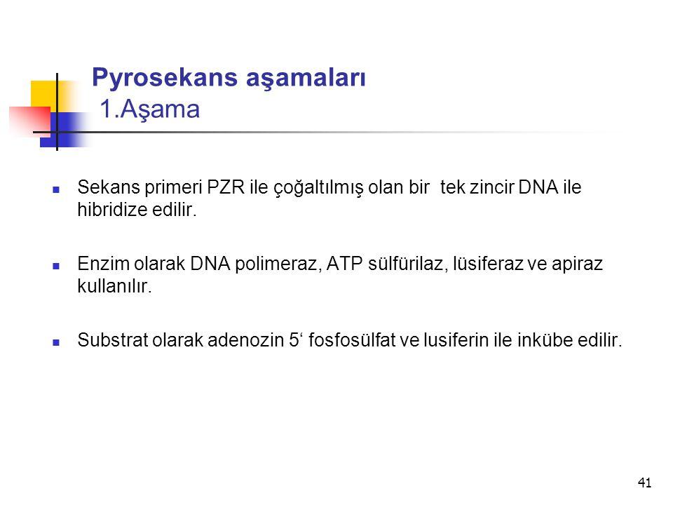 41 Pyrosekans aşamaları 1.Aşama Sekans primeri PZR ile çoğaltılmış olan bir tek zincir DNA ile hibridize edilir. Enzim olarak DNA polimeraz, ATP sülfü