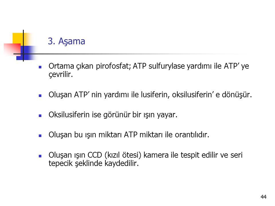 44 3. Aşama Ortama çıkan pirofosfat; ATP sulfurylase yardımı ile ATP' ye çevrilir. Oluşan ATP' nin yardımı ile lusiferin, oksilusiferin' e dönüşür. Ok