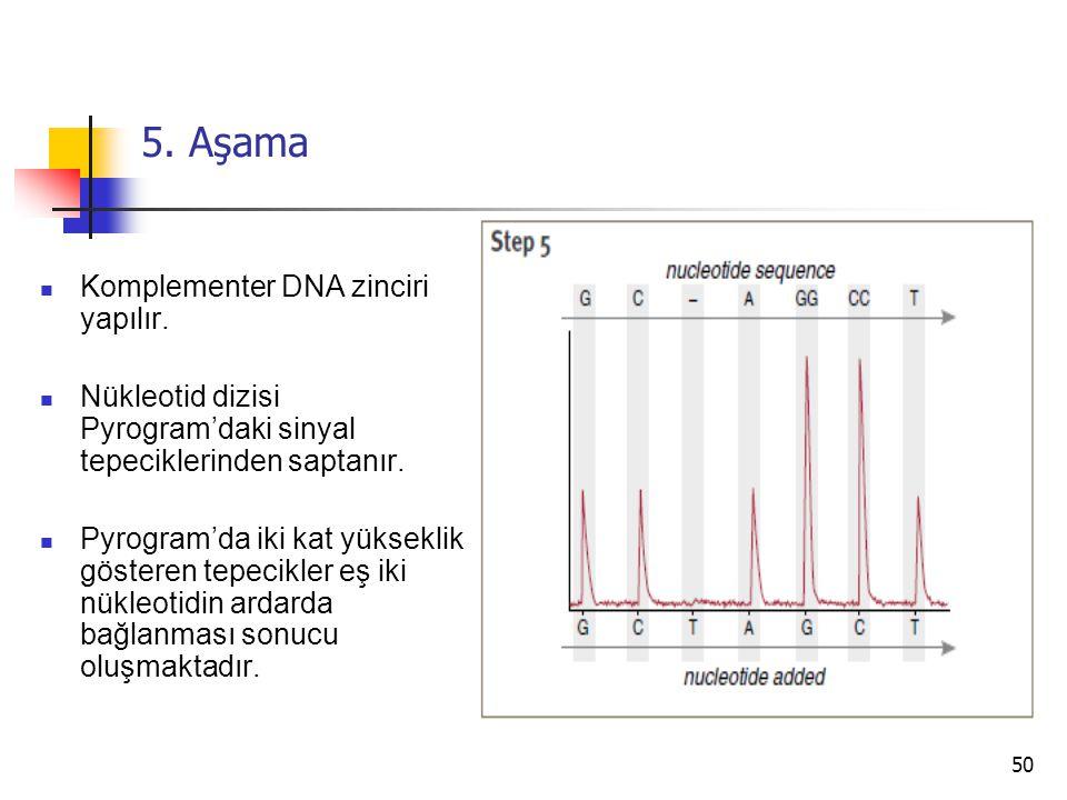 50 5. Aşama Komplementer DNA zinciri yapılır. Nükleotid dizisi Pyrogram'daki sinyal tepeciklerinden saptanır. Pyrogram'da iki kat yükseklik gösteren t
