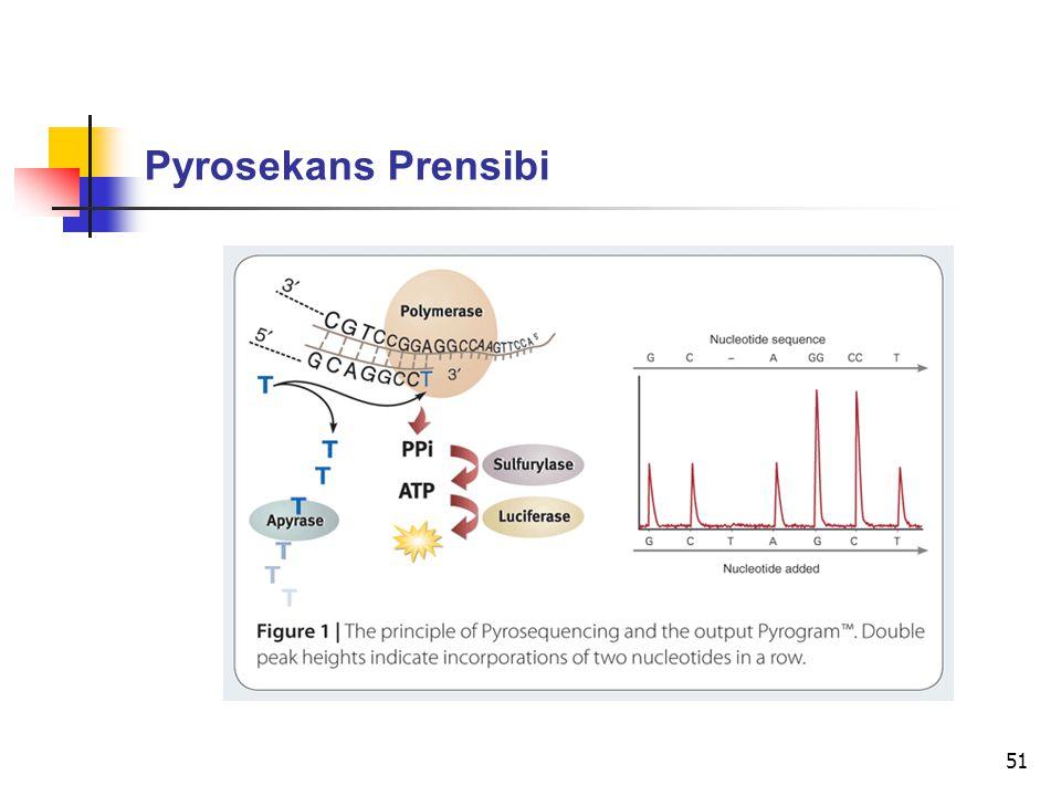 51 Pyrosekans Prensibi