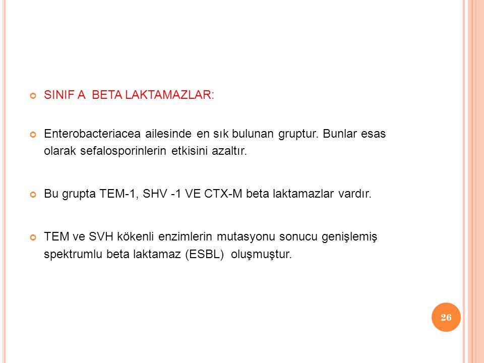 SINIF A BETA LAKTAMAZLAR: Enterobacteriacea ailesinde en sık bulunan gruptur.