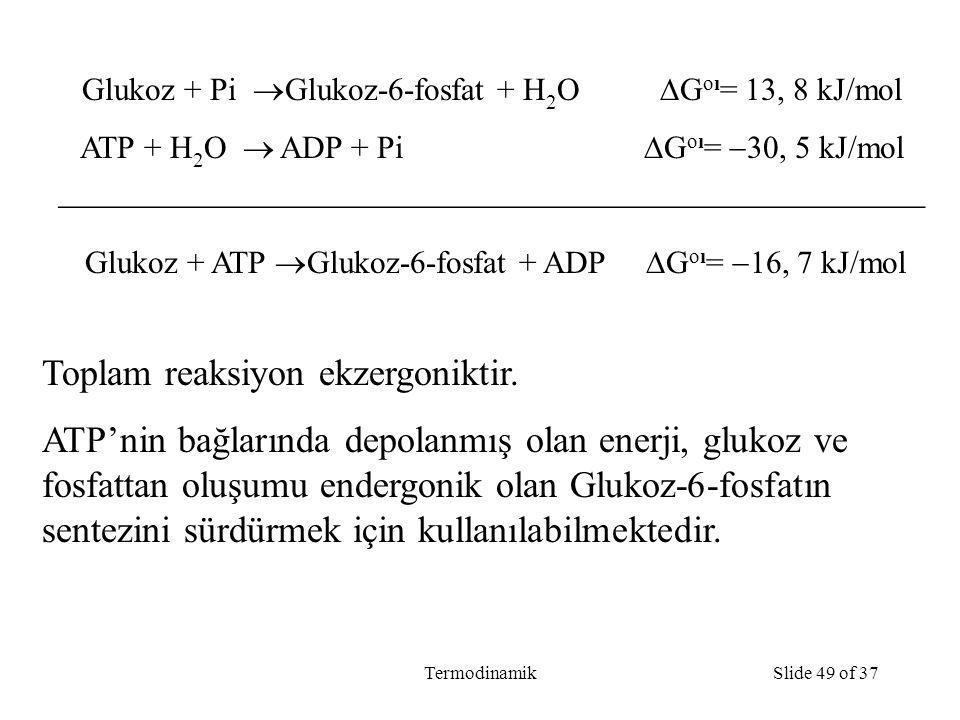 TermodinamikSlide 49 of 37 Glukoz + Pi  Glukoz-6-fosfat + H 2 O  G oı = 13, 8 kJ/mol ATP + H 2 O  ADP + Pi  G oı =  30, 5 kJ/mol  Glukoz + ATP  Glukoz-6-fosfat + ADP  G oı =  16, 7 kJ/mol Toplam reaksiyon ekzergoniktir.
