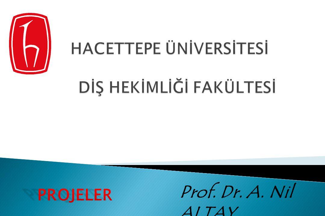 Prof. Dr. A. Nil ALTAY