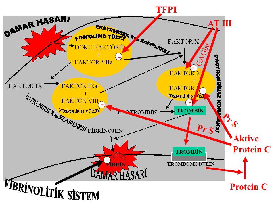 Protein C Aktive Protein C - - Pr S GAGlar AT III - - - TFPI -