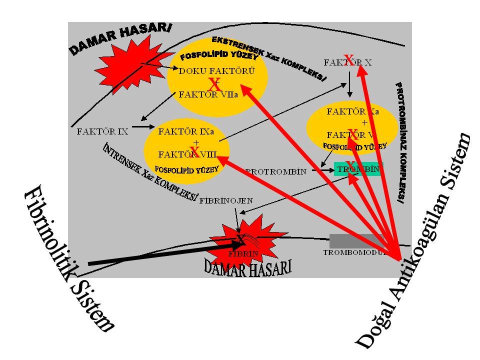 Pıhtılaşma sistemi Sağlam endotel Normal kan akımı Fibrinoliz Doğal antikoagülanlar