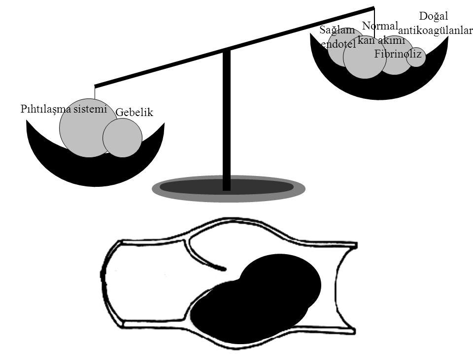 Sağlam endotel Normal kan akımı Fibrinoliz Doğal antikoagülanlar Pıhtılaşma sistemi Gebelik
