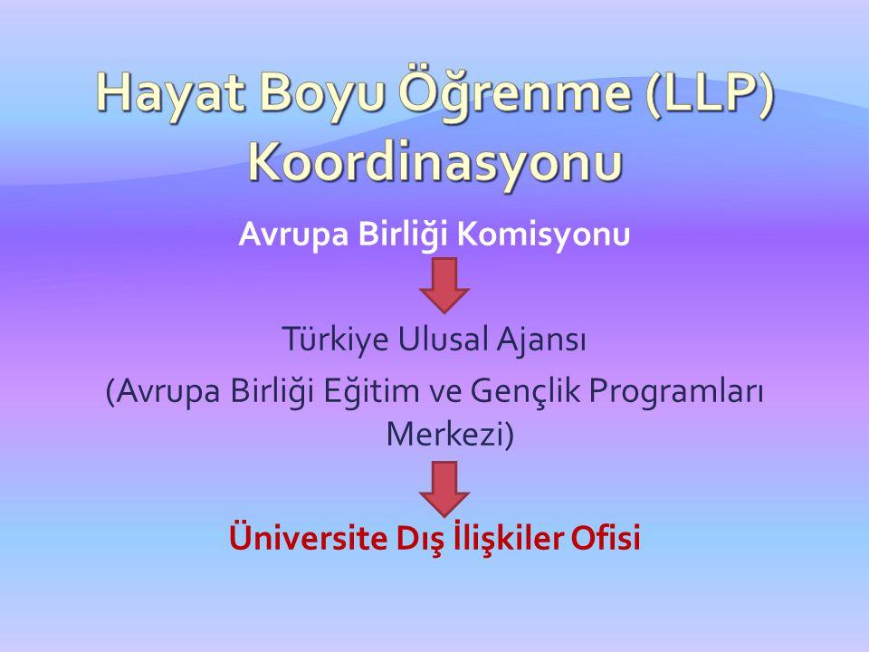 Avrupa Birliği Komisyonu Türkiye Ulusal Ajansı (Avrupa Birliği Eğitim ve Gençlik Programları Merkezi) Üniversite Dış İlişkiler Ofisi
