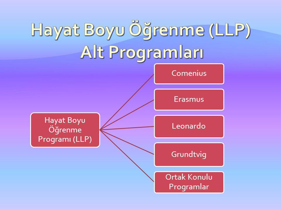 Hayat Boyu Öğrenme Programı (LLP) Comenius Erasmus Leonardo Grundtvig Ortak Konulu Programlar