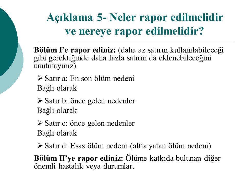 Açıklama 5- Neler rapor edilmelidir ve nereye rapor edilmelidir? Bölüm I'e rapor ediniz: (daha az satırın kullanılabileceği gibi gerektiğinde daha faz