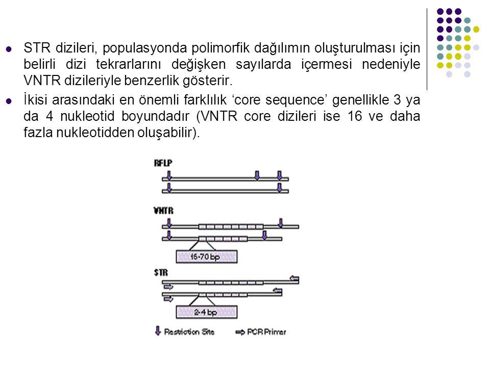 STR dizileri, populasyonda polimorfik dağılımın oluşturulması için belirli dizi tekrarlarını değişken sayılarda içermesi nedeniyle VNTR dizileriyle benzerlik gösterir.
