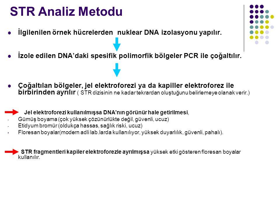 STR Analiz Metodu İlgilenilen örnek hücrelerden nuklear DNA izolasyonu yapılır.