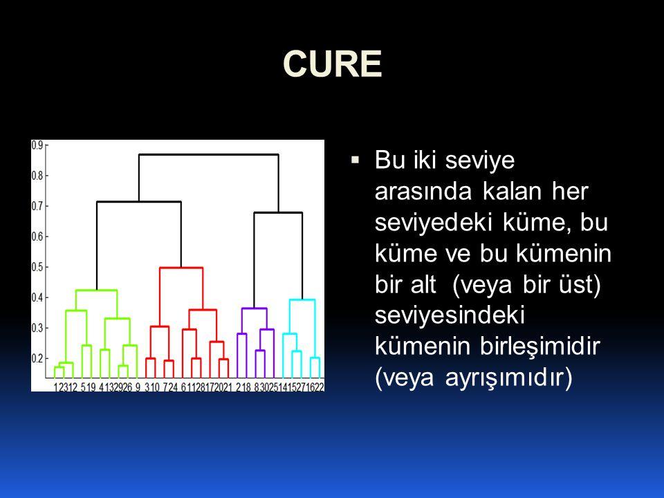 CURE  Bu iki seviye arasında kalan her seviyedeki küme, bu küme ve bu kümenin bir alt (veya bir üst) seviyesindeki kümenin birleşimidir (veya ayrışım