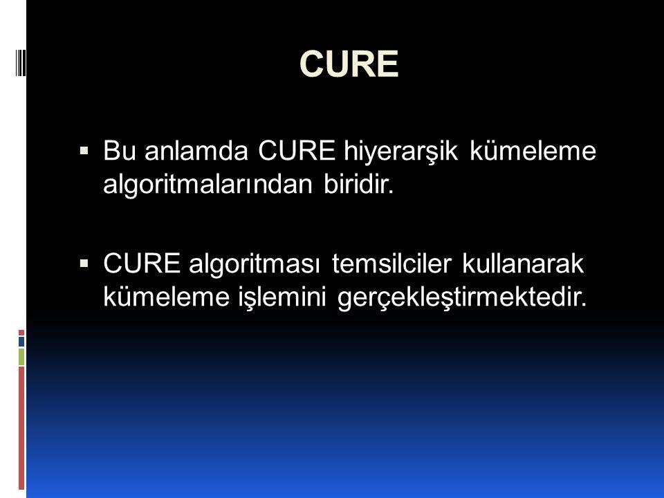 CURE  Bu anlamda CURE hiyerarşik kümeleme algoritmalarından biridir.  CURE algoritması temsilciler kullanarak kümeleme işlemini gerçekleştirmektedir