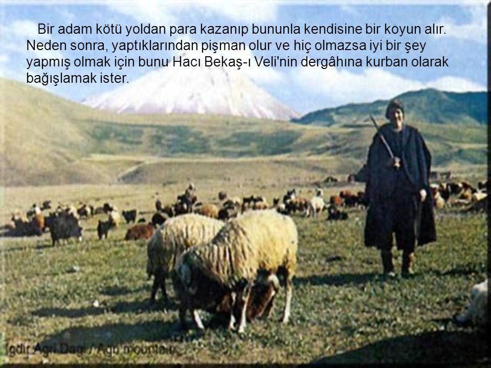Bir adam kötü yoldan para kazanıp bununla kendisine bir koyun alır.