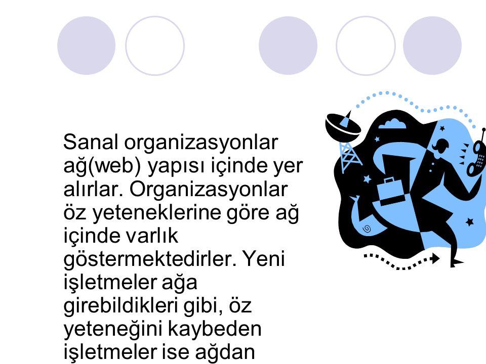Sanal organizasyonlar ağ(web) yapısı içinde yer alırlar. Organizasyonlar öz yeteneklerine göre ağ içinde varlık göstermektedirler. Yeni işletmeler ağa