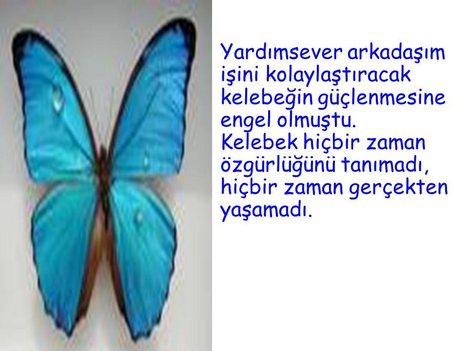 Yardımsever arkadaşım işini kolaylaştıracak kelebeğin güçlenmesine engel olmuştu. Kelebek hiçbir zaman özgürlüğünü tanımadı, hiçbir zaman gerçekten ya