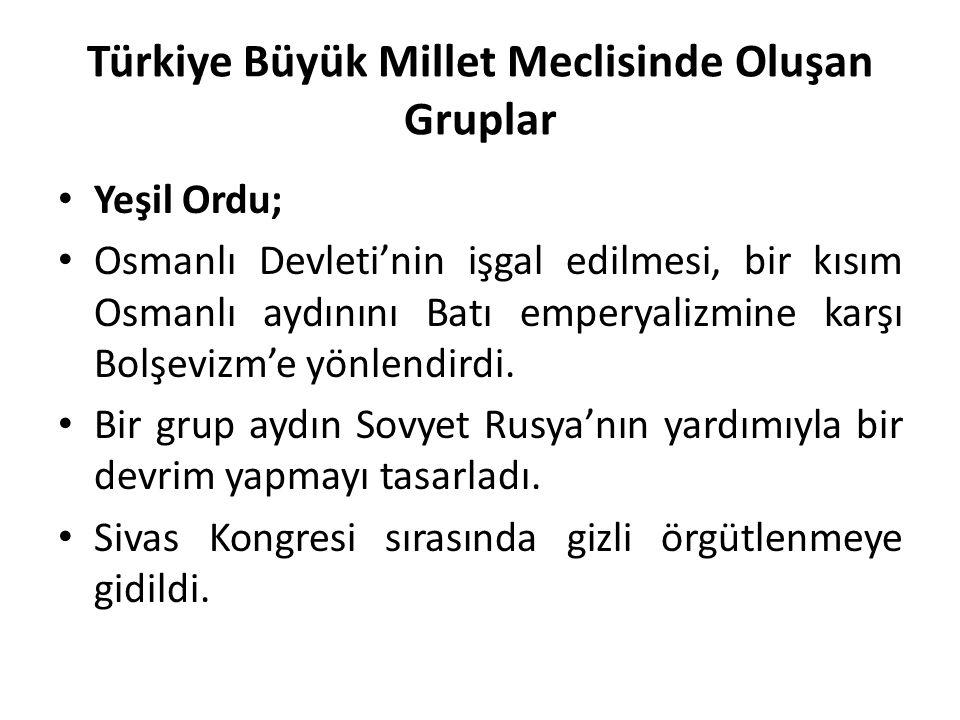 Türkiye Büyük Millet Meclisinde Oluşan Gruplar Yeşil Ordu; Osmanlı Devleti'nin işgal edilmesi, bir kısım Osmanlı aydınını Batı emperyalizmine karşı Bo