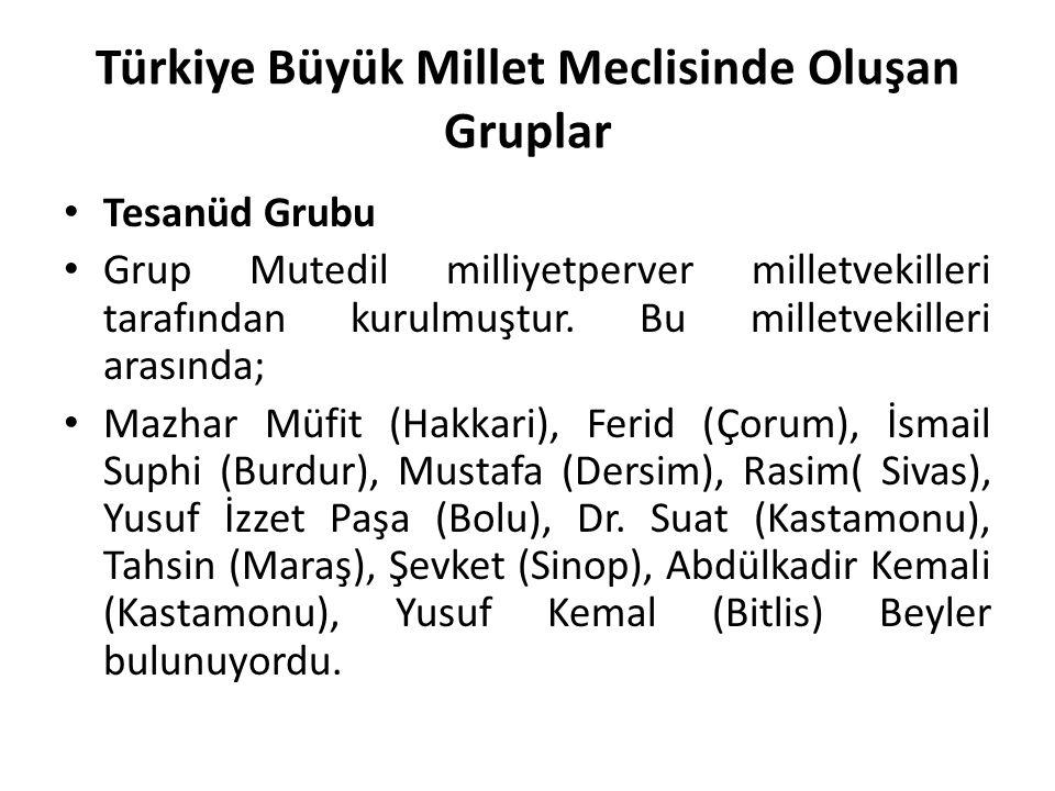 Türkiye Büyük Millet Meclisinde Oluşan Gruplar Tesanüd Grubu Grup Mutedil milliyetperver milletvekilleri tarafından kurulmuştur. Bu milletvekilleri ar