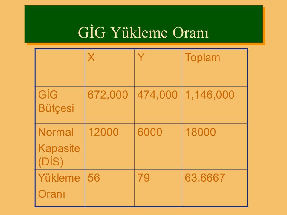 GİG Yükleme Oranı XYToplam GİG Bütçesi 672,000474,0001,146,000 Normal Kapasite (DİS) 12000600018000 Yükleme Oranı 567963.6667