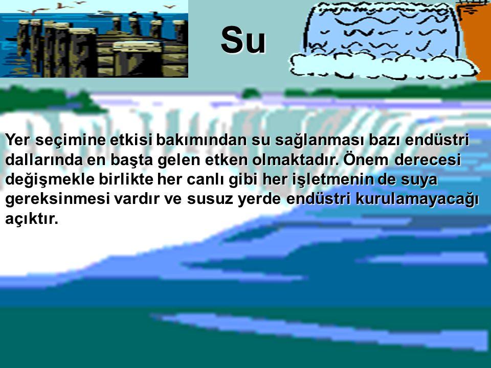 Su Yer seçimine etkisi bakımından su sağlanması bazı endüstri dallarında en başta gelen etken olmaktadır. Önem derecesi değişmekle birlikte her canlı