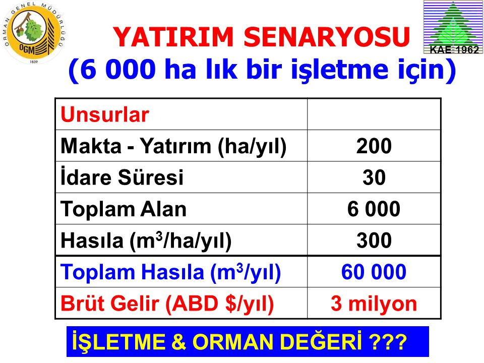 KAE 1962 YATIRIM SENARYOSU (6 000 ha lık bir işletme için) Unsurlar Makta - Yatırım (ha/yıl)200 İdare Süresi30 Toplam Alan6 000 Hasıla (m 3 /ha/yıl)30