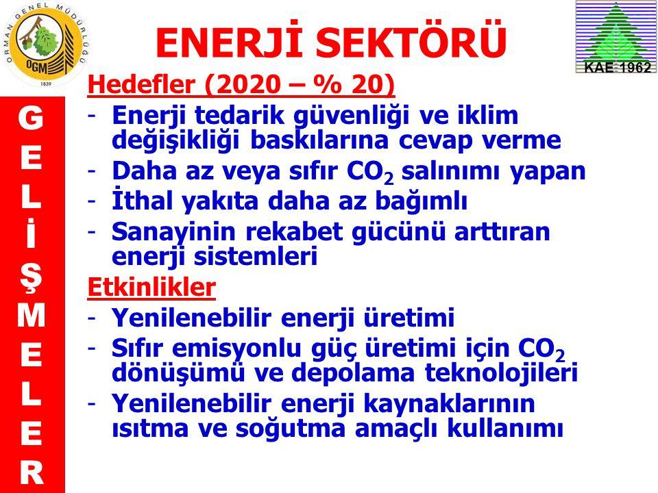 KAE 1962 ENERJİ SEKTÖRÜ Hedefler (2020 – % 20) -Enerji tedarik güvenliği ve iklim değişikliği baskılarına cevap verme -Daha az veya sıfır CO 2 salınım