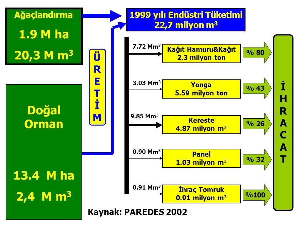 1999 yılı Endüstri Tüketimi 22,7 milyon m 3 İHRACATİHRACAT % 80 Kağıt Hamuru&Kağıt 2.3 milyon ton Ağaçlandırma 1.9 M ha 20,3 M m 3 Doğal Orman 13.4 M