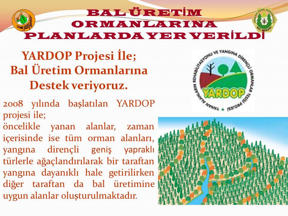 YARDOP Projesi İle; Bal Üretim Ormanlarına Destek veriyoruz. 2008 yılında başlatılan YARDOP projesi ile; öncelikle yanan alanlar, zaman içerisinde ise