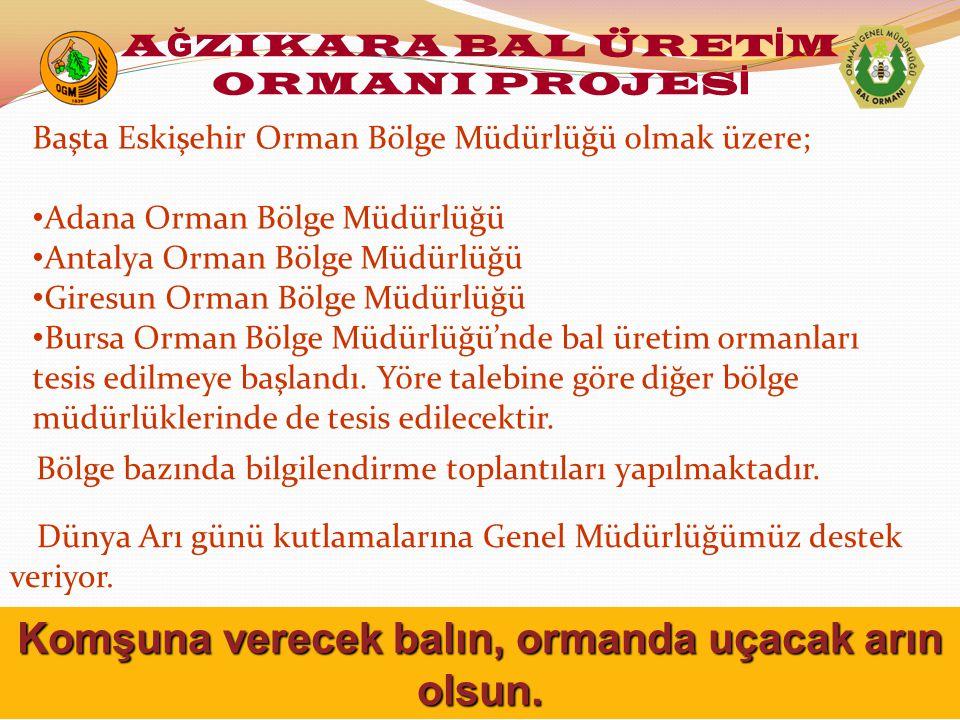 Bölge bazında bilgilendirme toplantıları yapılmaktadır. Başta Eskişehir Orman Bölge Müdürlüğü olmak üzere; Adana Orman Bölge Müdürlüğü Antalya Orman B