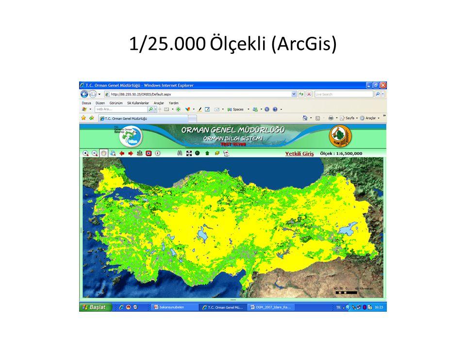 1/25.000 Ölçekli (ArcGis)