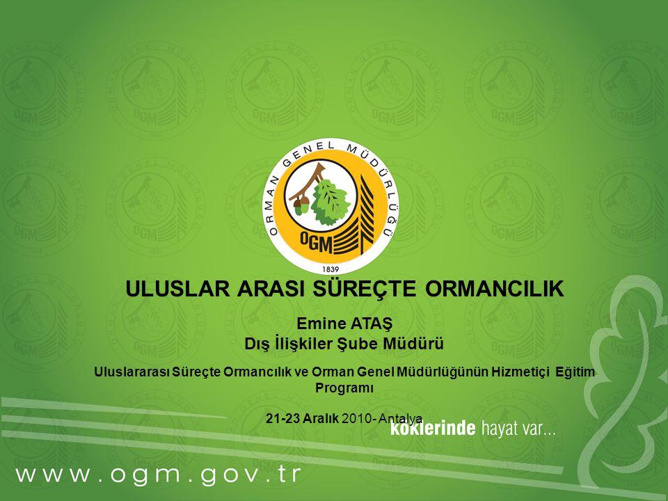 ULUSLAR ARASI SÜREÇTE ORMANCILIK Emine ATAŞ Dış İlişkiler Şube Müdürü Uluslararası Süreçte Ormancılık ve Orman Genel Müdürlüğünün Hizmetiçi Eğitim Programı 21-23 Aralık 2010- Antalya