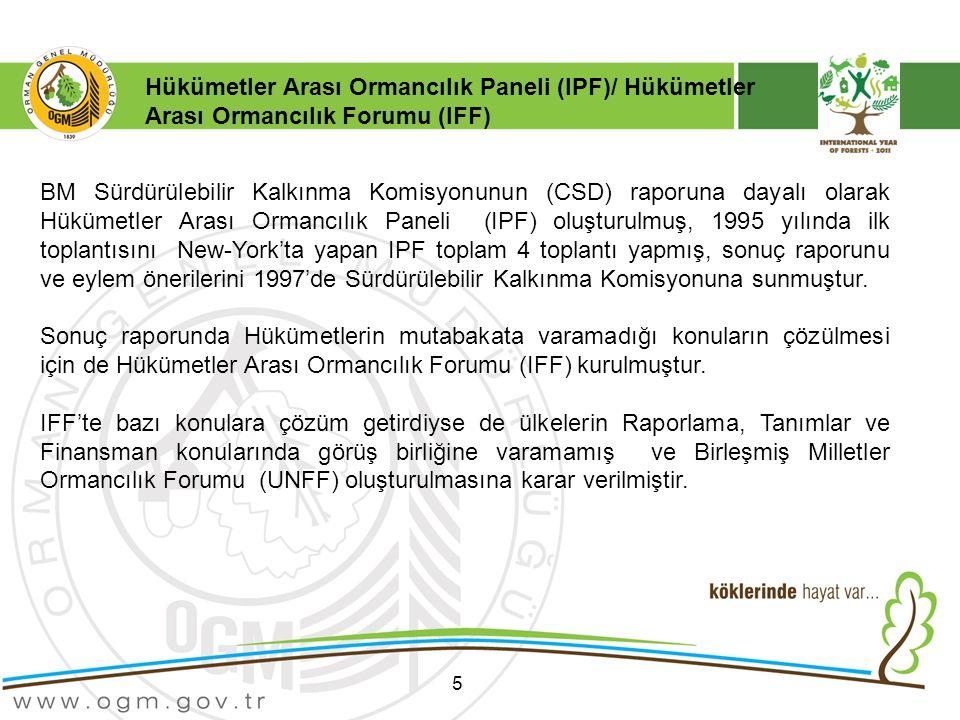 5 BM Sürdürülebilir Kalkınma Komisyonunun (CSD) raporuna dayalı olarak Hükümetler Arası Ormancılık Paneli (IPF) oluşturulmuş, 1995 yılında ilk toplantısını New-York'ta yapan IPF toplam 4 toplantı yapmış, sonuç raporunu ve eylem önerilerini 1997'de Sürdürülebilir Kalkınma Komisyonuna sunmuştur.