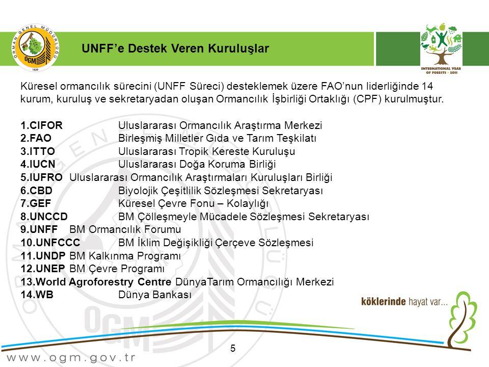 5 Küresel ormancılık sürecini (UNFF Süreci) desteklemek üzere FAO'nun liderliğinde 14 kurum, kuruluş ve sekretaryadan oluşan Ormancılık İşbirliği Ortaklığı (CPF) kurulmuştur.