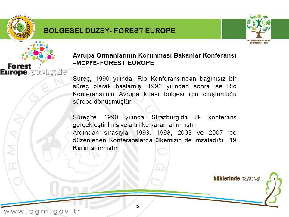 5 Avrupa Ormanlarının Korunması Bakanlar Konferansı – MCPFE- FOREST EUROPE Süreç, 1990 yılında, Rio Konferansından bağımsız bir süreç olarak başlamış, 1992 yılından sonra ise Rio Konferansı'nın Avrupa kıtası bölgesi için oluşturduğu sürece dönüşmüştür.