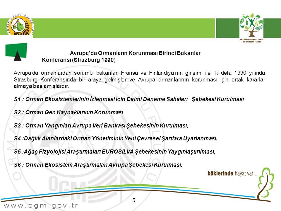 5 Avrupa da Ormanların Korunması Birinci Bakanlar Konferansı (Strazburg 1990) Avrupa'da ormanlardan sorumlu bakanlar, Fransa ve Finlandiya'nın girişimi ile ilk defa 1990 yılında Strasburg Konferansında bir araya gelmişler ve Avrupa ormanlarının korunması için ortak kararlar almaya başlamışlardır.