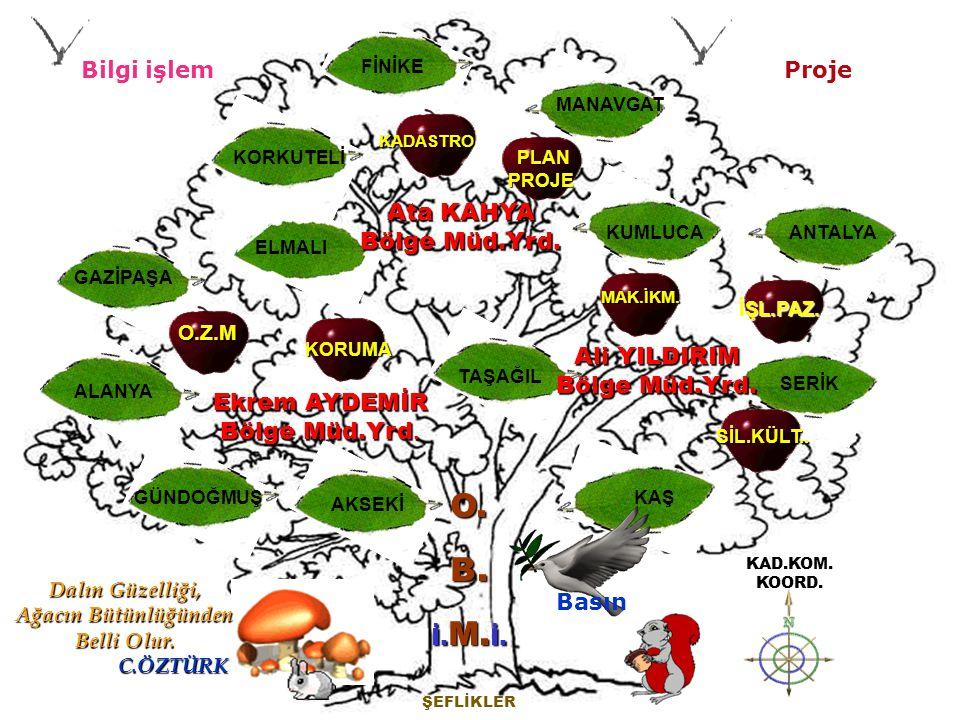 ……… Şube Müdürlüğü Antalya Orman Bölge Müdürlüğü Personel Durumu