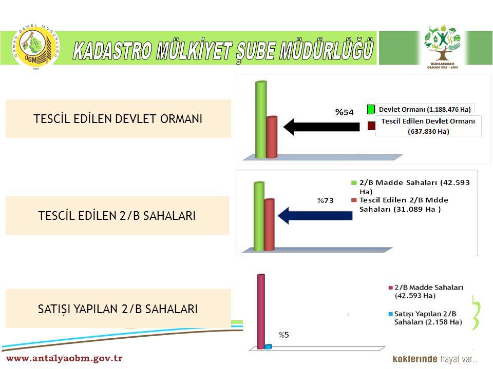 TESCİL EDİLEN DEVLET ORMANI TESCİL EDİLEN 2/B SAHALARI SATIŞI YAPILAN 2/B SAHALARI