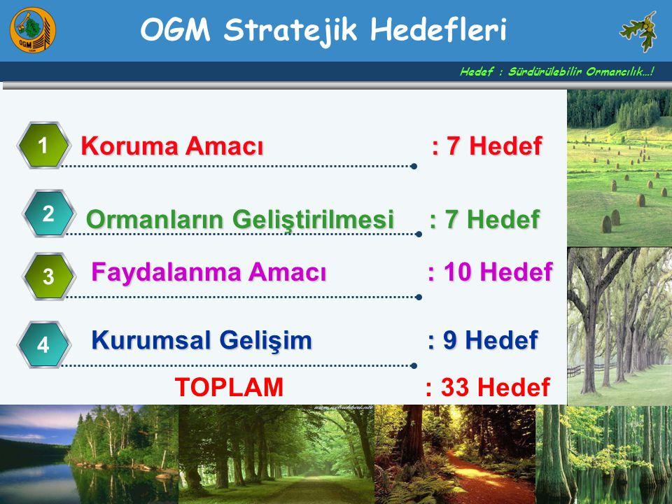 Koruma Amacı : 7 Hedef 1 Ormanların Geliştirilmesi : 7 Hedef 2 Faydalanma Amacı : 10 Hedef 3 Kurumsal Gelişim: 9 Hedef 4 Hedef : Sürdürülebilir Ormanc